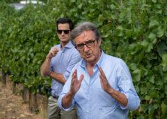 Pinot Nero e Riesling Renano: i primi vini di Cotarella in Oltrepò pavese
