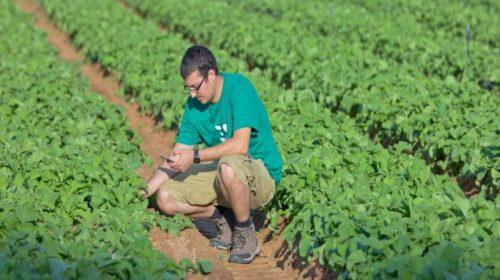 Gli-agricoltori-italiani-I-piu-poveri-dEuropa.-Sifus-Confali-critica-la-Pac-Maurizio-Grosso