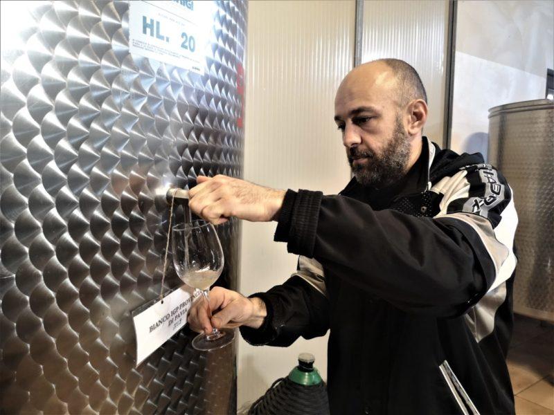 Stefano Banfi vini naturali La Rocchetta di Mondondone oltrepò pavese