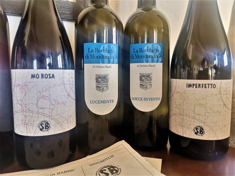 vini naturali Oltrepò pavese La Rocchetta di Mondondone Stefano Banfi (1)