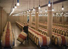 Via libera a 9,54 milioni di euro per lo stoccaggio dei vini Docg, Doc e Igt