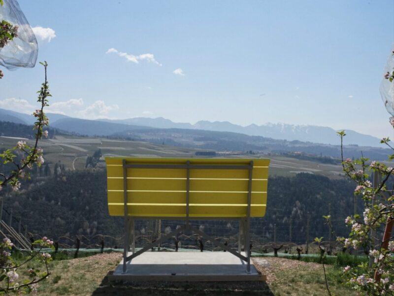 La Panchina gigante del Groppello in Val di Non, per salvare il vitigno dalla scomparsa