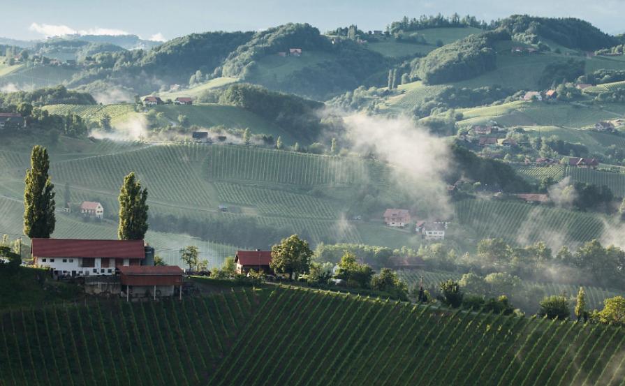 Il vino dell'Austria in sei etichette Kamptal Dac Südsteiermark Thermenregion Wagram Austrian wine Niederösterreich