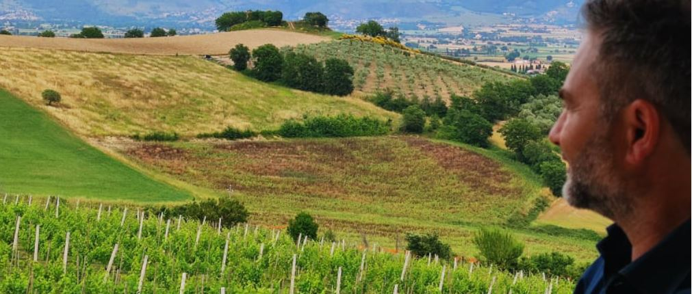 Cantina Ninni Spoleto, Miglior cantina Centro Italia 2022 Winemag.it l'anima bianca dell'Umbria