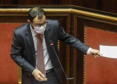 Patuanelli, informativa al Senato sul Prosek croato: «Netta contrarietà alla proposta»