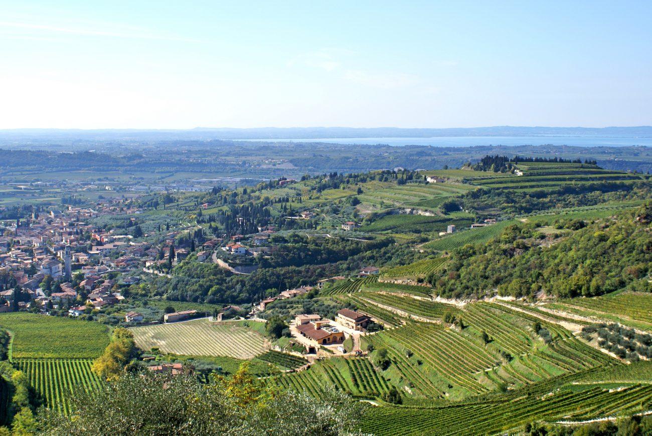 Valpolicella-Cortina: il Consorzio punta sulla ristorazione di fascia altra