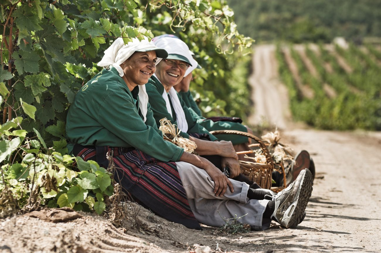 Vranec Vranac World Day 2021: sfide e prospettive per il vino rosso simbolo dei Balcani